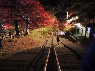 中野もみじ山2015 神社の階段