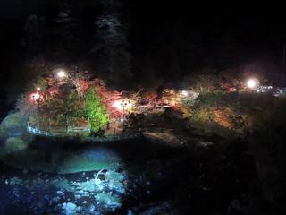 中野もみじ山2015 ライトアップ全景